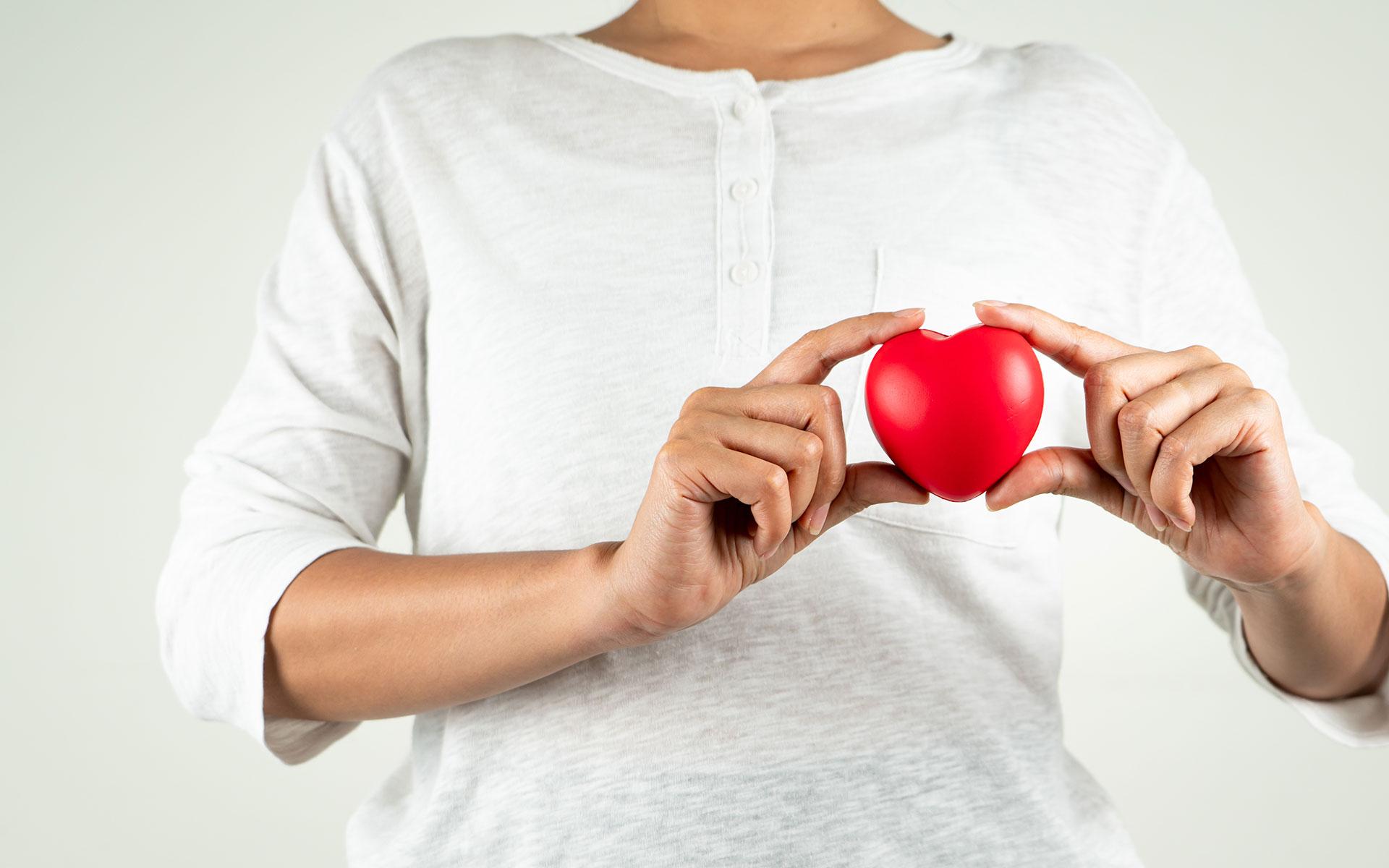 Forsythia Suspensa as the heart stimulant