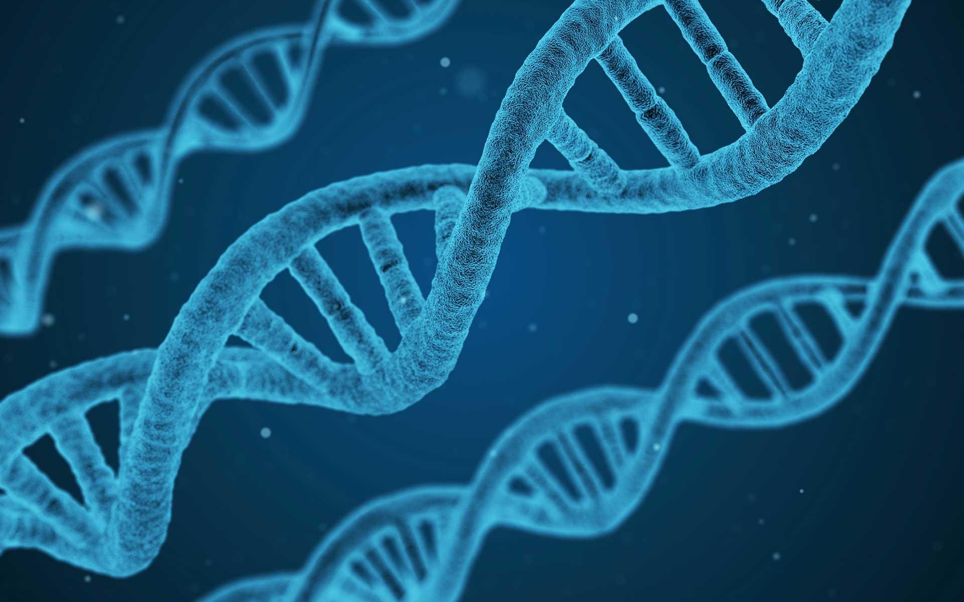 Human DNA bound by Nrf2
