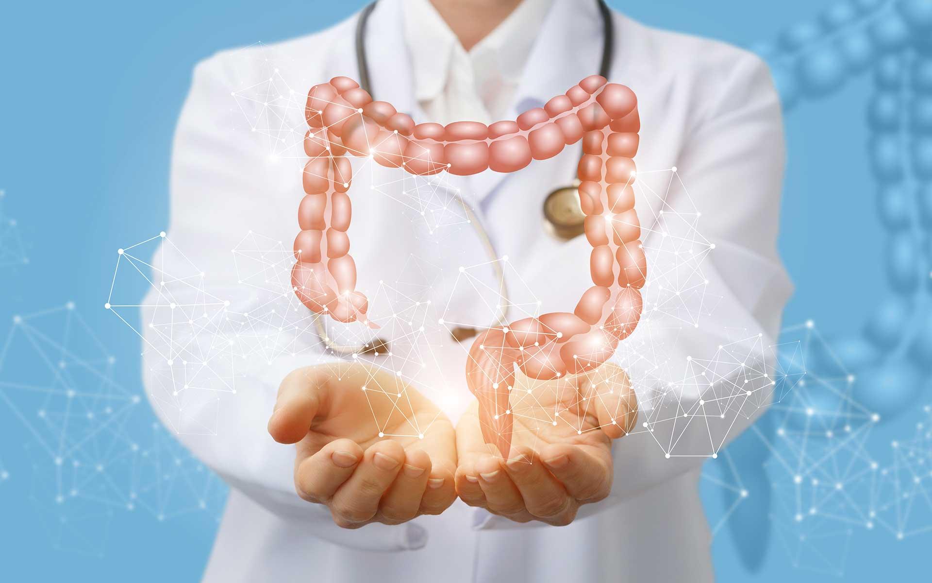 Healthy Digestive System