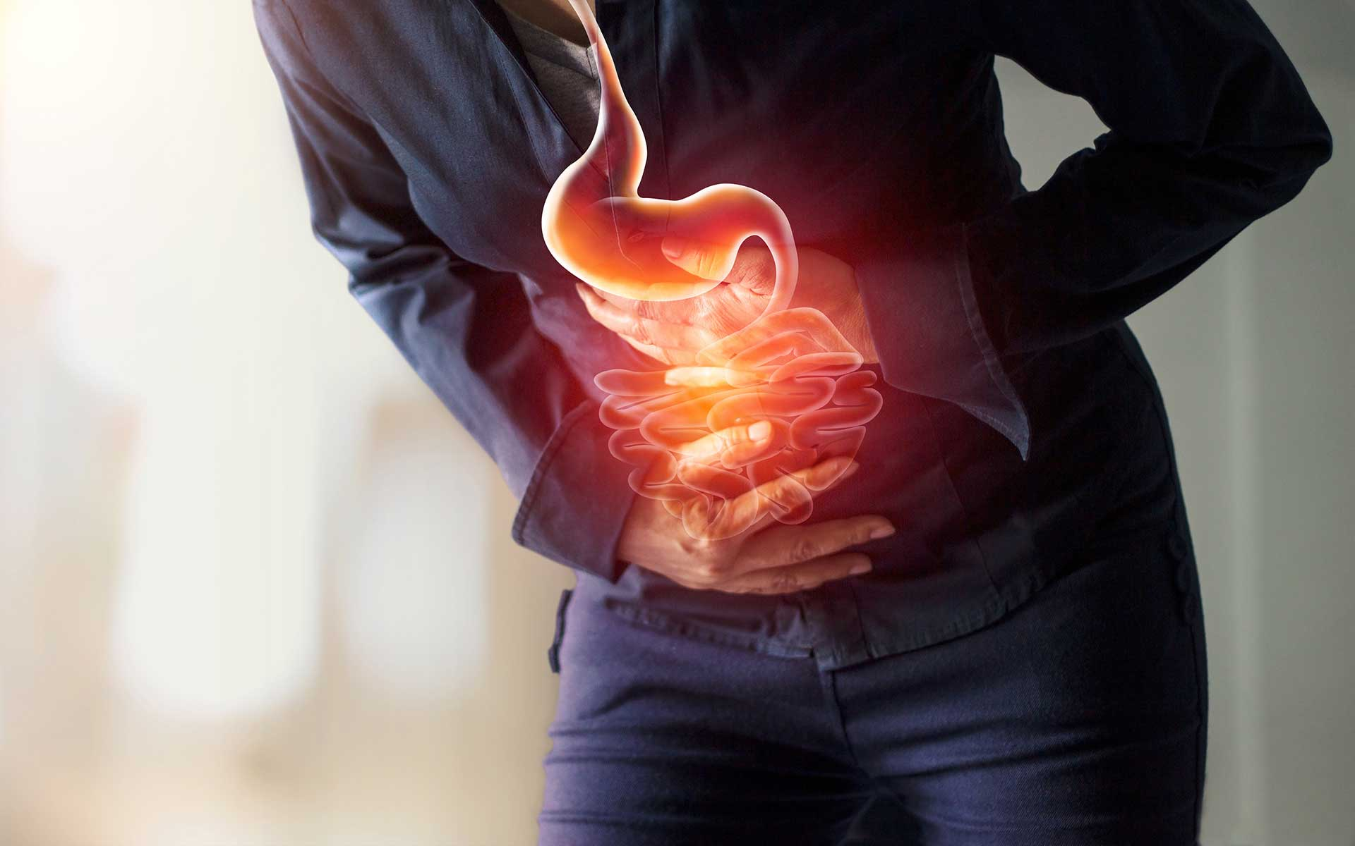 Digestive System and Digestive Health