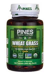 Pines - Wheat Grass